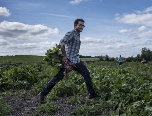 Când fine dining-ul trece pe la fermă. Un interviu cu Christian Puglisi